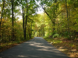 new england country road